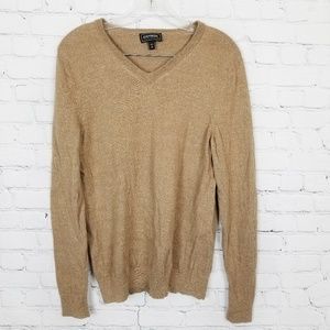 Express|Extra Fine Merino Wool V-Neck Sweater